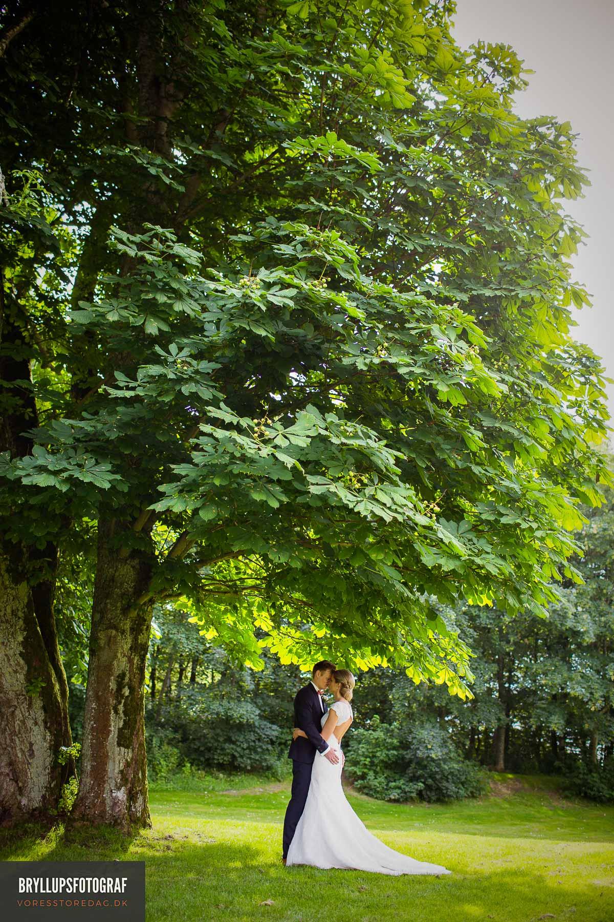 bryllupsfotografering Sebber Kloster
