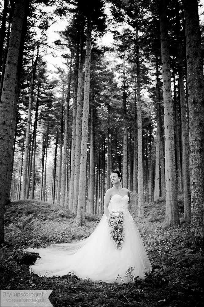 Bryllup i Sdr. Bork forsamlingshus