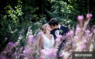 Alt om bryllup
