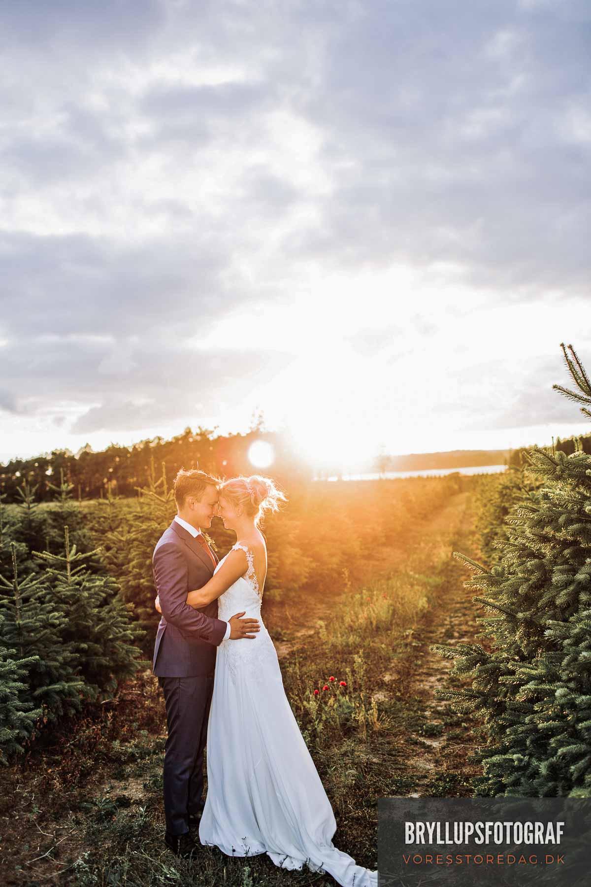 bryllupsportræt Jomfrubakken bryllup
